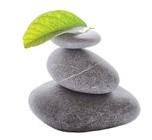 Mitchell Massage Therapy