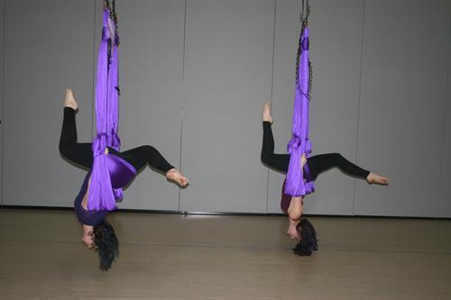 logo  julestarz en l u0027air aerial hammock aerial hammock   julestarz academy  rh   julestarzacademy