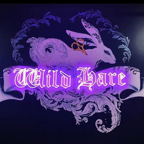 Wild Hare Salon and Gallery