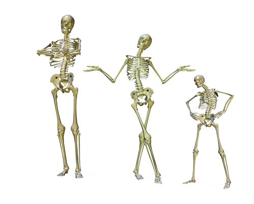 Burlington Osteopaths