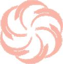 Magnolia Skin Care
