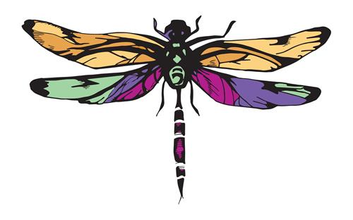 The Zen Dragonfly LLC