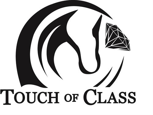 Touch of Class Equine