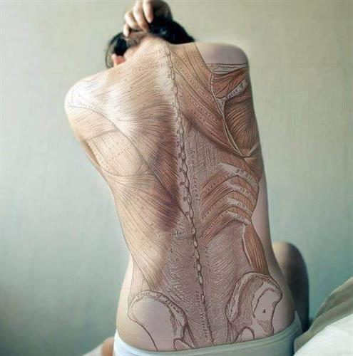 Shelli Shanti, LMT-     The ZenGringa! Massage, Reflexology, Mobile Massage, Yoga & Qigong