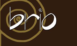 Brio Salon and Spa