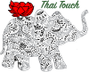 Thai Touch Foot and Body Massage LLC